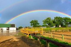 rainbow_at_shrule